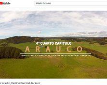 Arauco_DA_Web