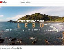 Lebu_DA_web